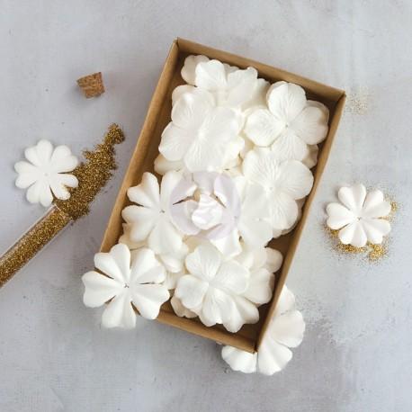 """Fiori Box Flowers  """"Purity"""""""